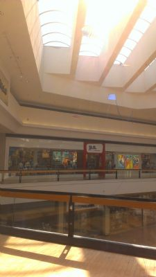 Fort Wayne Mall >> Terry Adams, Inc.